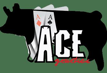 Ace Genetics logo